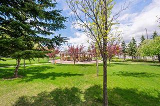 Photo 22: 4205 2280 68 Street NE in Calgary: Monterey Park Apartment for sale : MLS®# A1143228