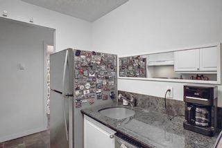 Photo 14: 202 1513 26th Avenue SW 26th Avenue SW in Calgary: South Calgary Apartment for sale : MLS®# A1117931