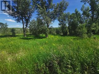 Photo 8: 918 Creekside Drive in Cardston: Vacant Land for sale : MLS®# A1009683