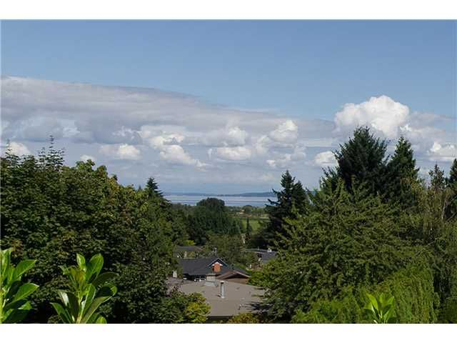 """Photo 20: Photos: 408 ALLEN Drive in Tsawwassen: Pebble Hill House for sale in """"PEBBLE HILL"""" : MLS®# V1137836"""