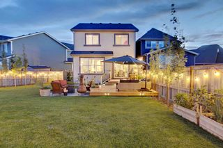 Photo 42: 123 Masters Heights SE in Calgary: Mahogany Detached for sale : MLS®# A1050411