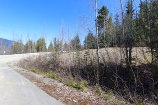 Photo 8: Lot 11 Ivy Road: Eagle Bay Vacant Land for sale (South Shuswap)  : MLS®# 10229941