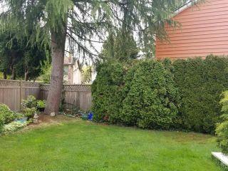 Photo 23: R2573107 - 5135 Sapphire Pl, Richmond House