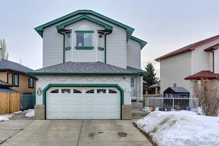Main Photo: 813 Applewood Drive SE in Calgary: Applewood Park Detached for sale : MLS®# A1076322