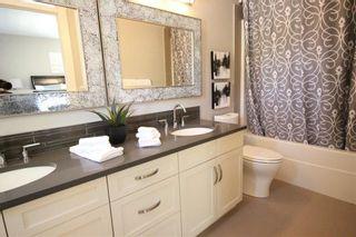 Photo 9: 10604/06/08 61 Avenue in Edmonton: Zone 15 House Triplex for sale : MLS®# E4225377