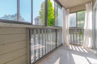 Photo 12: 202 1525 Hillside Ave in : Vi Oaklands Condo for sale (Victoria)  : MLS®# 860666