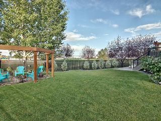Photo 28: 37 DANFIELD Place: Spruce Grove House for sale : MLS®# E4263522
