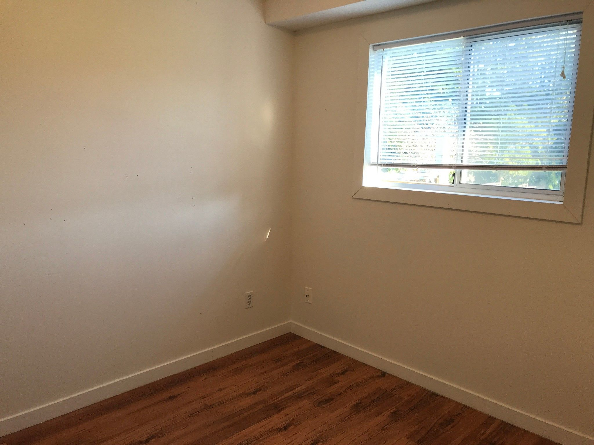 Photo 7: Photos: 5616 Hipwell Pl. in Sardis: House for rent