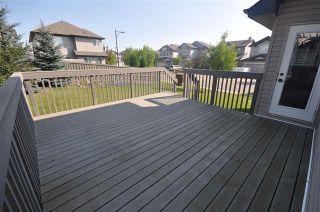 Photo 24: 20304 47 AV NW: Edmonton House for sale : MLS®# E4078023