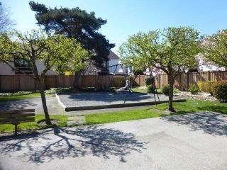 """Photo 14: 535 9651 GLENDOWER Drive in Richmond: Saunders Townhouse for sale in """"GLENACRES VILLAGE"""" : MLS®# V1058496"""
