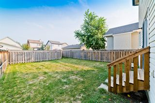 Photo 28: 371 Copperfield Heights SE in Calgary: Copperfield Detached for sale : MLS®# A1131781