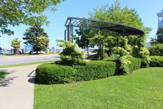 Photo 36: 307 125 Third Street in Cobourg: Other for sale : MLS®# X5295257