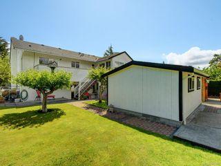 Photo 20: 4362 Shelbourne St in Saanich: SE Gordon Head House for sale (Saanich East)  : MLS®# 842682