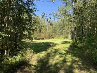 Photo 7: TBD Crystal Key Crescent: Rural Wetaskiwin County Rural Land/Vacant Lot for sale : MLS®# E4212671