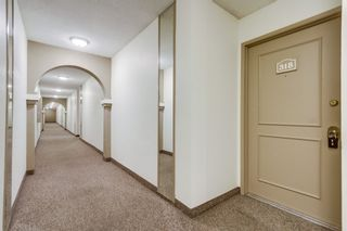 Photo 2: MISSION VALLEY Condo for sale : 2 bedrooms : 10737 San Diego Mission #318 in San Diego