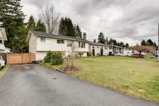 """Photo 28: 1233 ELLIS Drive in Port Coquitlam: Birchland Manor House for sale in """"Birchland Manor"""" : MLS®# R2555177"""