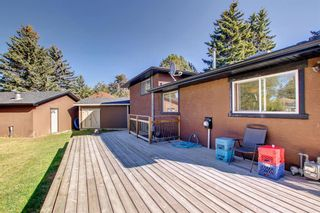Photo 45: 1931 Pinetree Crescent NE in Calgary: Pineridge Detached for sale : MLS®# A1153335