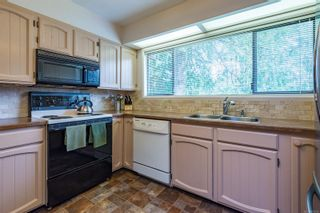 Photo 50: 4365 Munster Rd in : CV Courtenay West House for sale (Comox Valley)  : MLS®# 872010