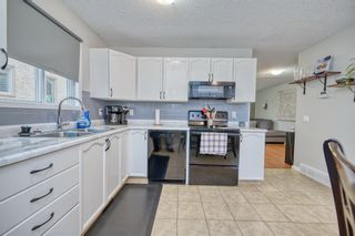 Photo 28: 39 Erin Green Way SE in Calgary: Erin Woods Detached for sale : MLS®# A1118796
