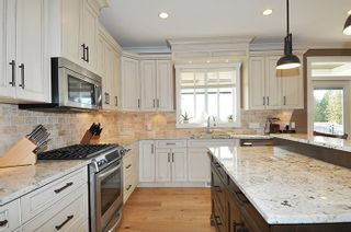 Photo 4: 13373 235A STREET in Maple Ridge: Silver Valley House for sale : MLS®# R2035910