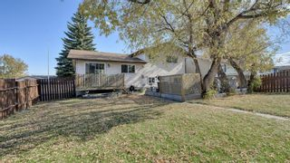 Photo 45: 347 Whiteside Road NE in Calgary: Whitehorn Detached for sale : MLS®# A1153718