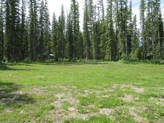 Photo 35: 70041 Highway 591: Rural Clearwater County Detached for sale : MLS®# C4305359