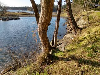 Photo 4: 161 Colvilleton Trail in : Isl Protection Island Land for sale (Islands)  : MLS®# 870953