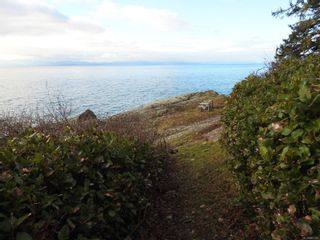 Photo 48: 2892 Fishboat Bay Rd in : Sk French Beach House for sale (Sooke)  : MLS®# 863163