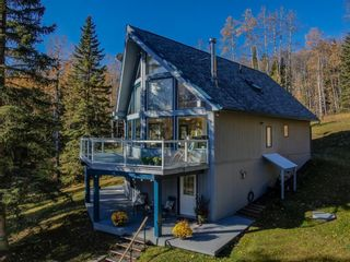 Photo 44: 111 Aspen Creek Drive: Rural Foothills County Detached for sale : MLS®# A1151574