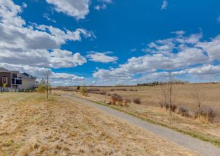 Photo 3: 203 Crestridge Hill SW in Calgary: Crestmont Detached for sale : MLS®# A1105863