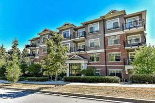 "Photo 1: 210 19530 65 Avenue in Surrey: Clayton Condo for sale in ""WILLOW GRAND"" (Cloverdale)  : MLS®# R2152804"