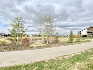 Photo 49: 315 Reunion Green NW: Airdrie Detached for sale : MLS®# A1077177