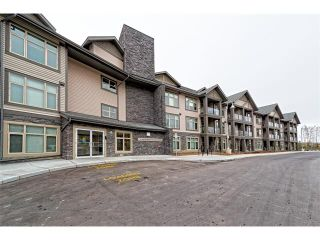 Photo 19: 201 15 ASPENMONT Heights SW in Calgary: Aspen Woods Condo  : MLS®# C4040342