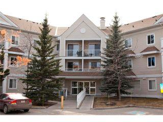 Photo 22: 1308 11 CHAPARRAL RIDGE Drive SE in Calgary: Chaparral Condo for sale : MLS®# C4055545