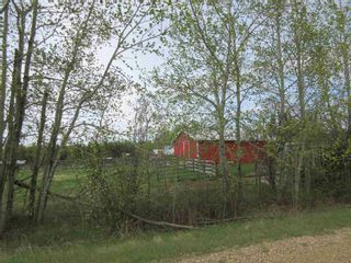 Photo 43: 63202 RR 194: Rural Thorhild County House for sale : MLS®# E4246203