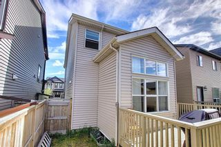 Photo 37: 168 SKYVIEW SPRINGS Gardens NE in Calgary: Skyview Ranch Detached for sale : MLS®# A1093077