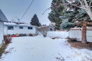 Photo 42: 8019 4A Street SW in Calgary: Kingsland Detached for sale : MLS®# A1063979