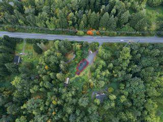 Photo 34: 26546 DEWDNEY TRUNK Road in Maple Ridge: Websters Corners House for sale : MLS®# R2622440