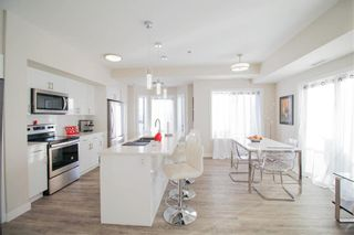 Photo 9: 215 80 Philip Lee Drive in Winnipeg: Crocus Meadows Condominium for sale (3K)  : MLS®# 202012317