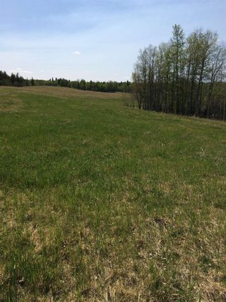 Photo 6: Twp 510 RR 33: Rural Leduc County Rural Land/Vacant Lot for sale : MLS®# E4239253