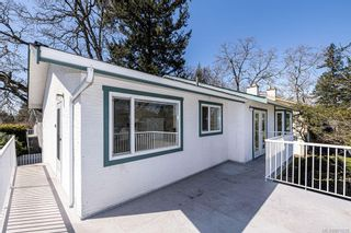 Photo 13: 4208 Morris Dr in : SE Lake Hill House for sale (Saanich East)  : MLS®# 871625