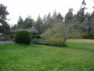 Photo 3: 267 W MURPHY Drive in Tsawwassen: Pebble Hill House for sale : MLS®# V817475