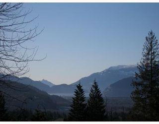 Photo 10: 40628 THUNDERBIRD Ridge in Squamish: Garibaldi Highlands House for sale : MLS®# V685183