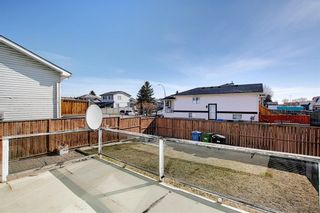 Photo 35: 351 Applewood Drive SE in Calgary: Applewood Park Detached for sale : MLS®# A1094539