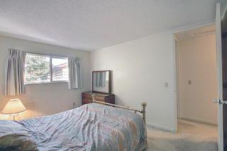 Photo 22: 47 Falworth Place NE in Calgary: Falconridge Detached for sale : MLS®# A1139441