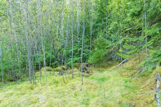 Photo 82: 3,4,6 Armstrong Road in Eagle Bay: Vacant Land for sale : MLS®# 10133907