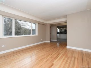 Photo 7: 3590 Shelbourne St in VICTORIA: SE Cedar Hill House for sale (Saanich East)  : MLS®# 805260