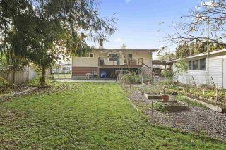 Photo 1: 11556 WOOD Street in Maple Ridge: Southwest Maple Ridge House for sale : MLS®# R2478427