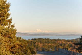 Photo 67: 3253 Doncaster Dr in : SE Cedar Hill House for sale (Saanich East)  : MLS®# 870104