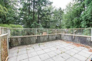 """Photo 16: 3333 MARQUETTE Crescent in Vancouver: Champlain Heights Townhouse for sale in """"CHAMPLAIN RIDGE"""" (Vancouver East)  : MLS®# R2283203"""